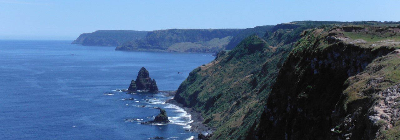 Rangaika Cliffs, Chatham Islands